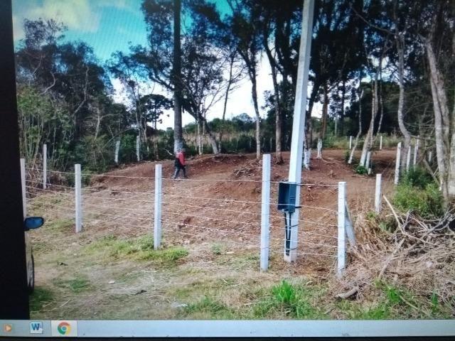 Terreno em S.J.Pinhais - Foto 5