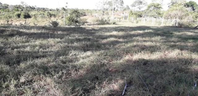 Fazenda em Roraima na BR210 - Caroebe - Foto 10