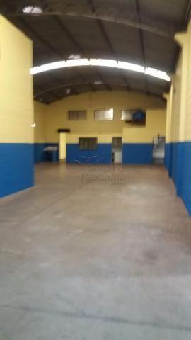 Escritório para alugar em Vila elisa, Ribeirao preto cod:L13215 - Foto 4