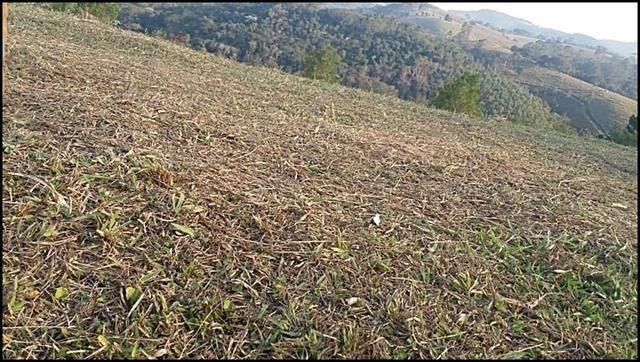 Vendo um lindo terreno de 600m2, próximo há - Foto 2