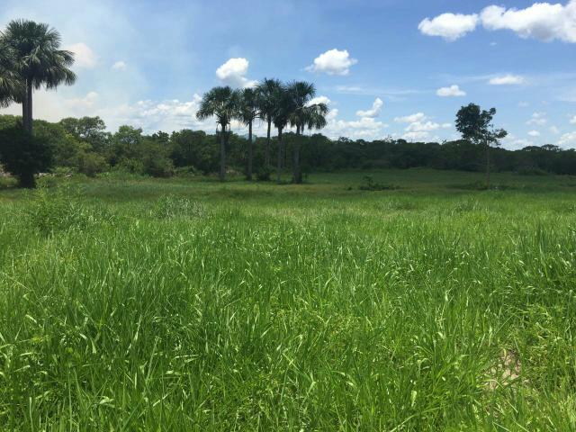 Fazenda perto de Cuiabá