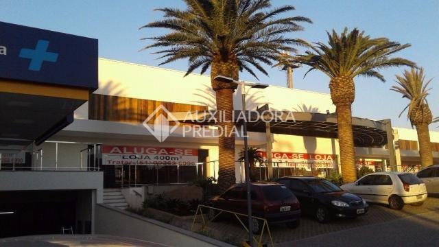 Loja comercial para alugar em Vila ipiranga, Porto alegre cod:242289 - Foto 6