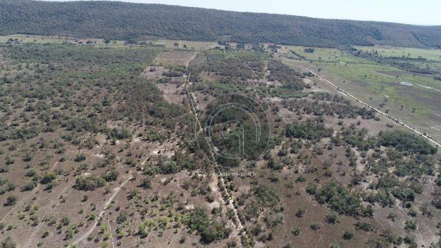 Fazenda para pecuária 650 ha na região santo antonio do leverger - Foto 3