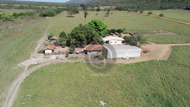 Fazenda para pecuária 185 ha santo antonio leverger - Foto 7