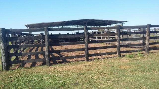 Fazenda 354,hectares - Foto 8