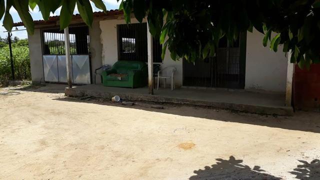 Vende-se um sítio em santa casa mirueira Paulista - Foto 10