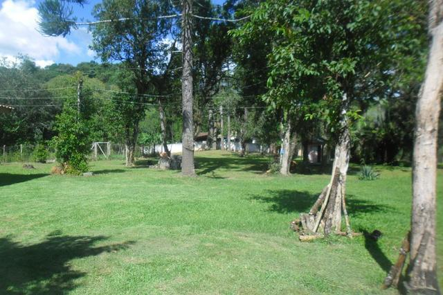 Vende-se chácara em cai de baixo - Quitandinha (cód. A289) - Foto 2