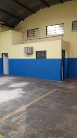 Escritório para alugar em Vila elisa, Ribeirao preto cod:L13215 - Foto 6