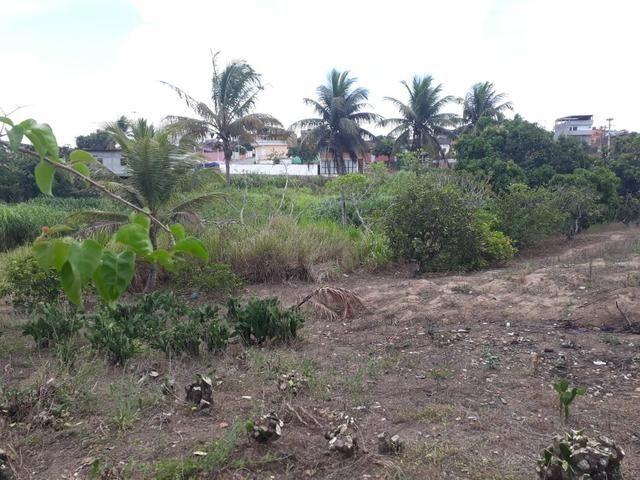 Vende-se um sítio em bom jardim - Foto 3