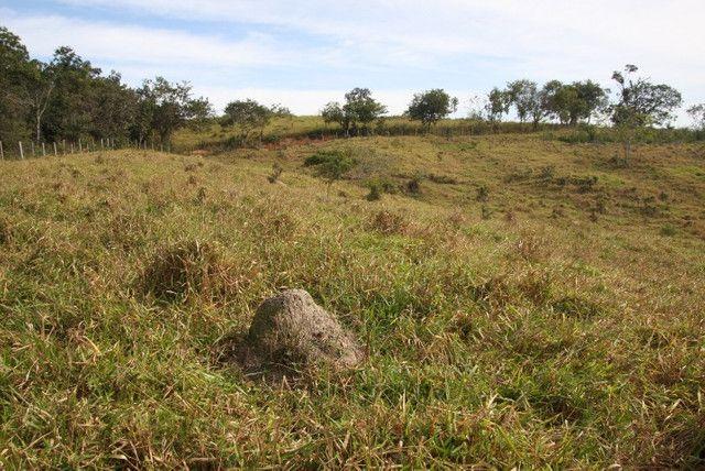 Terreno de 12 hectares em Fortuna de Minas - Foto 15