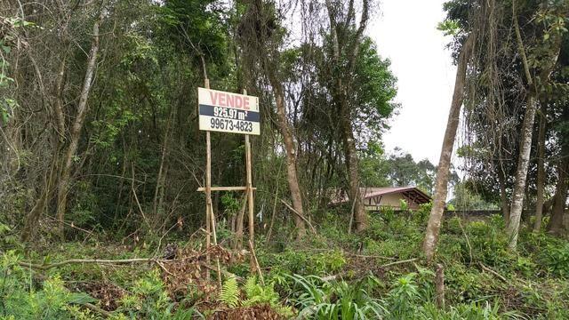 Terreno Colombo/Embu - Foto 9