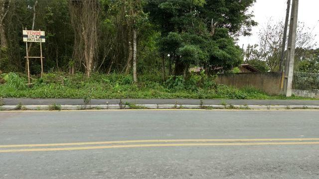 Terreno Colombo/Embu - Foto 7