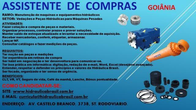 Comprador(a) Assist. * noção em mecânica/peças-Goiania