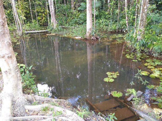 Terra Alta Pará fonte: img.olx.com.br