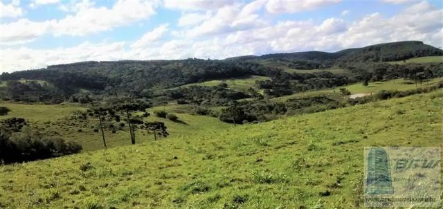 Fazenda 494.000m²(49,4 hectares) em Capão Alto SC - Foto 18