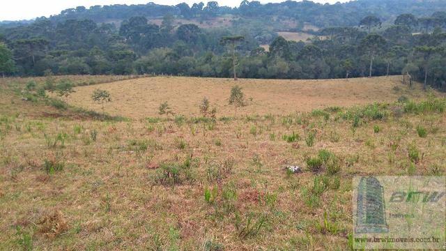 Fazenda 494.000m²(49,4 hectares) em Capão Alto SC - Foto 12