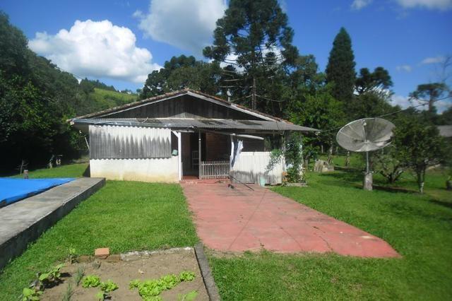 Vende-se chácara em cai de baixo - Quitandinha (cód. A289) - Foto 14