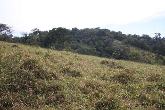 Terreno de 12 hectares em Fortuna de Minas - Foto 13
