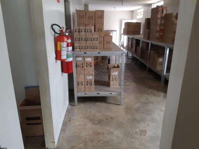 Escritório à venda com 5 dormitórios em Jardim sao luiz, Ribeirao preto cod:V13707 - Foto 9