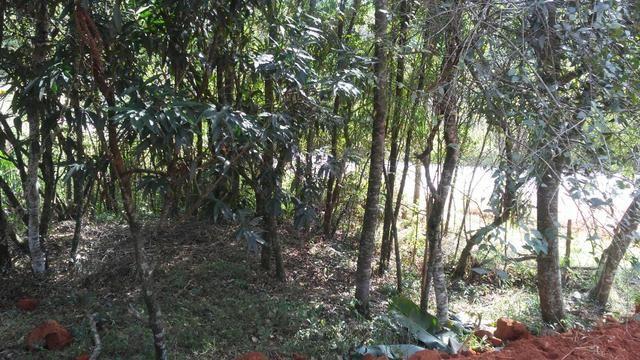 Salão Comercial com projeto aprovado em terreno de 922m² Próximo ao B. Maracanã em Jarinu - Foto 13