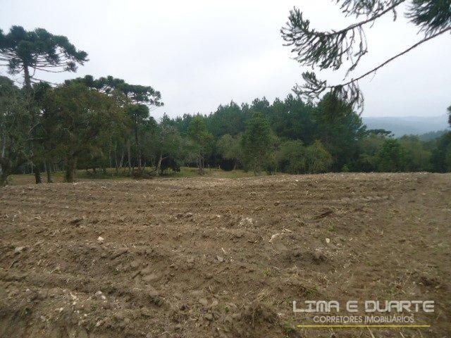 Chácara à venda em Bituvinha, Mafra cod:216CH - Foto 15
