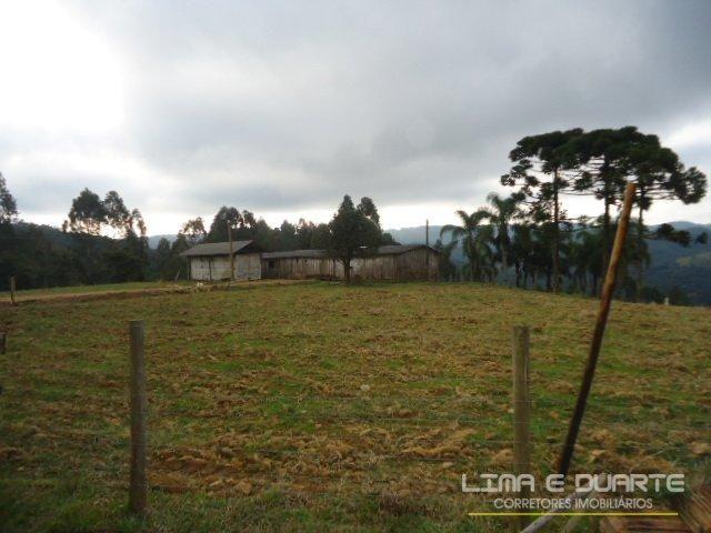 Chácara à venda com 0 dormitórios em Sertãozinho, São bento do sul cod:153CH - Foto 6
