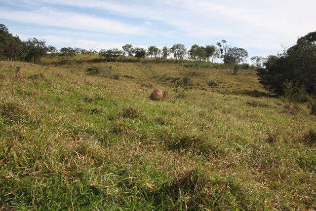 Terreno de 12 hectares em Fortuna de Minas - Foto 14
