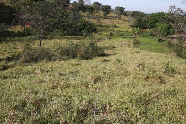 Terreno de 12 hectares em Fortuna de Minas - Foto 10