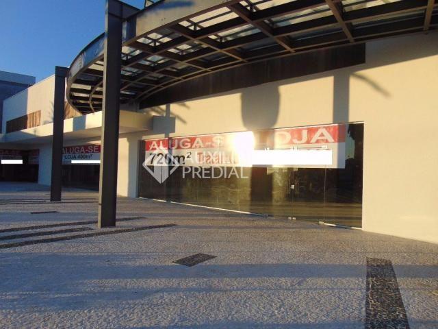 Loja comercial para alugar em Vila ipiranga, Porto alegre cod:242289 - Foto 3