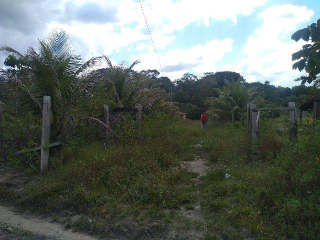 70 mil reais sito antes a Terra Alta no Pará 100x120 ,igarape ,cercado, casa zap * - Foto 4