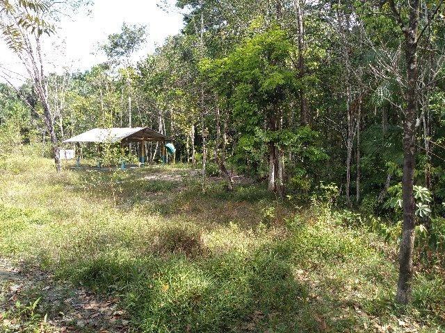 70 mil reais sito antes a Terra Alta no Pará 100x120 ,igarape ,cercado, casa zap * - Foto 13