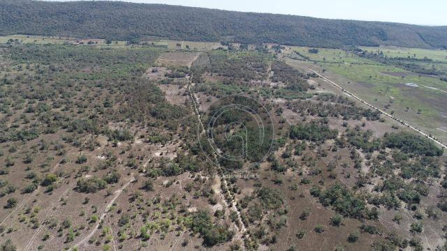 Fazenda para pecuária 650 ha na região santo antonio do leverger - Foto 6
