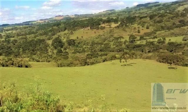 Fazenda 494.000m²(49,4 hectares) em Capão Alto SC - Foto 2