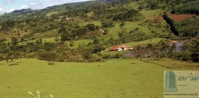 Fazenda 494.000m²(49,4 hectares) em Capão Alto SC - Foto 19