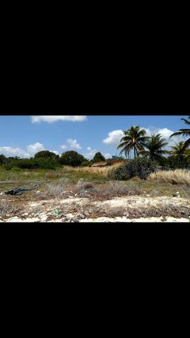 Vendo terreno a beira mar em ponta de Pedras-pe- R$120mil - Foto 4