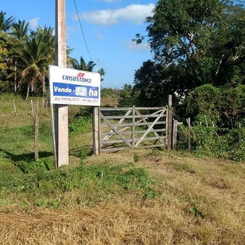 Área nas margens da BR 101 - Foto 2