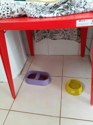 Celular LG k9, um microondas, e um jogo de mesa Tramontina - Foto 2