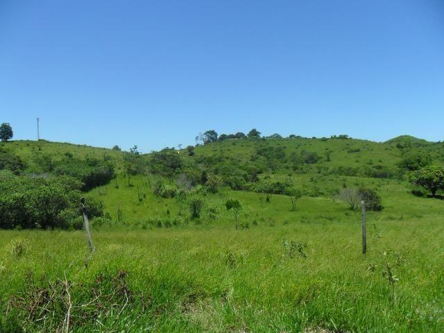 Sítio em São Vicente - Araruama / RJ - Foto 10