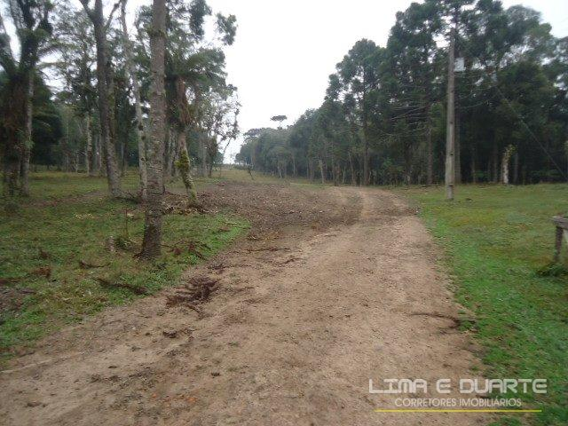 Chácara à venda em Bituvinha, Mafra cod:216CH - Foto 8