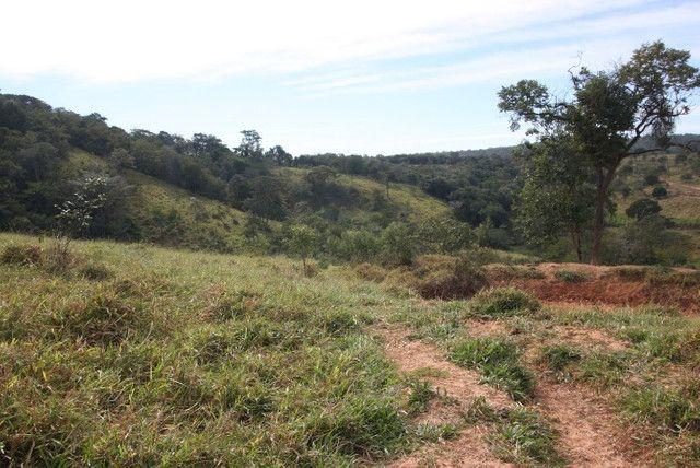 Terreno de 12 hectares em Fortuna de Minas - Foto 12