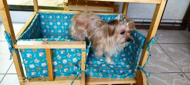 Casinha Cama Para Cães e Gatos