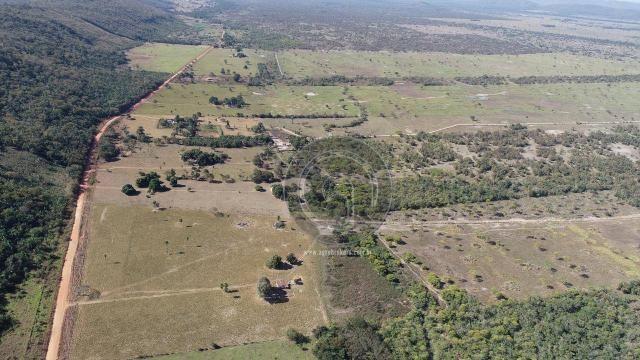 Fazenda para pecuária 650 ha na região santo antonio do leverger - Foto 4