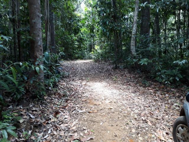 Sítio em Itacaré - Bahia - Foto 3