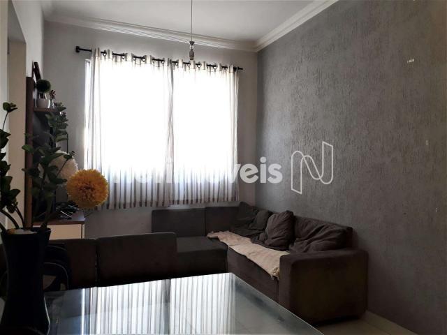 Apartamento à venda com 2 dormitórios em Glória, Belo horizonte cod:753033 - Foto 2