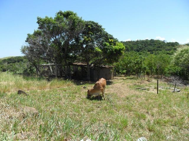 Sítio em São Vicente - Araruama / RJ - Foto 11