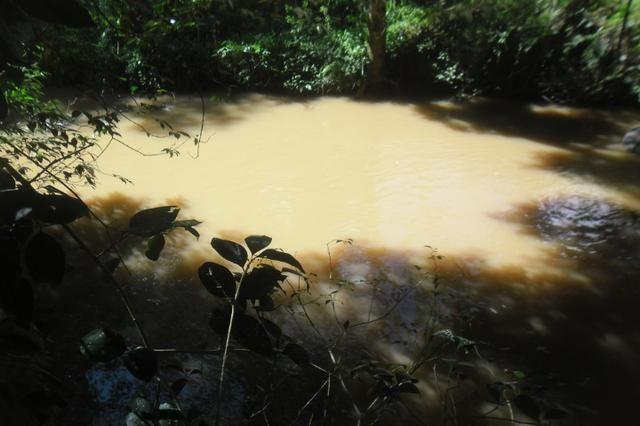 Vende-se chácara em cai de baixo - Quitandinha (cód. A289) - Foto 5