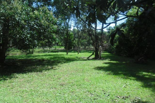 Vende-se chácara em cai de baixo - Quitandinha (cód. A289) - Foto 10