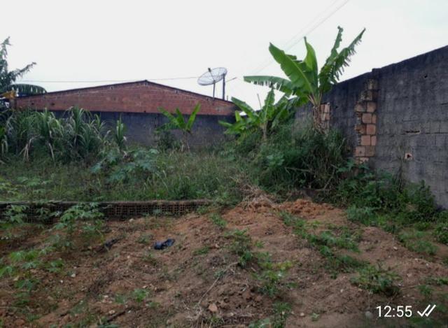 Vendo terreno em Joaquim Nabuco - Foto 4