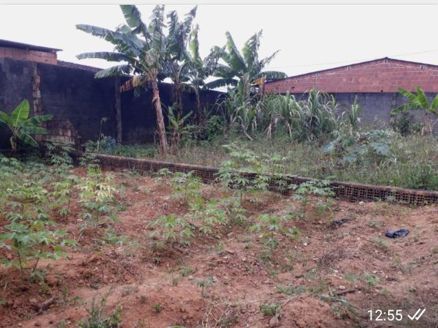 Vendo terreno em Joaquim Nabuco - Foto 2