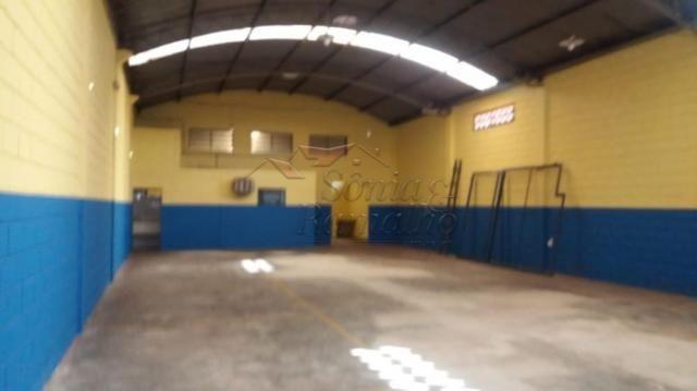 Escritório para alugar em Vila elisa, Ribeirao preto cod:L13215 - Foto 10